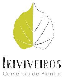 Iriviveiros - Comércio de Plantas Lda.