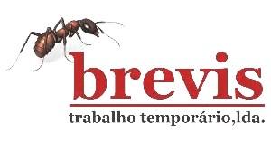 Brevis - trabalho temporário lda