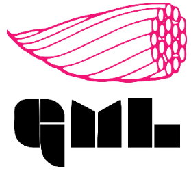 GML Transmission Line Solutions, S.A