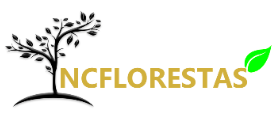 NC FLORESTAS LDA