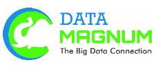 Data Magnum Europa, Lda.