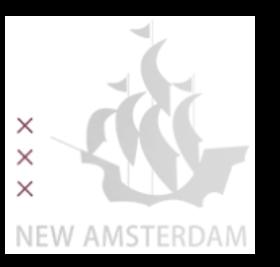 New Amsterdam Technology & Business Ventures