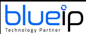 blueip-s-de-telececomunicacoes-e-informatica-lda