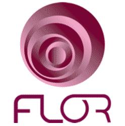 Duarte Flor, Lda